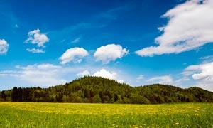 蓝天?#33258;?#19979;的山林和野花摄影图片