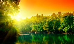 陽光下的湖泊和樹林攝影圖片