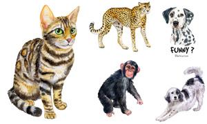 水彩绘画风格动物主题矢量素材集V04