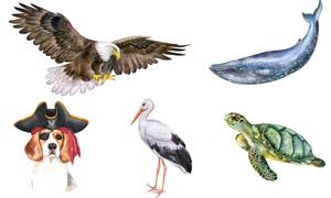 水彩绘画风格动物主题矢量素材集V08