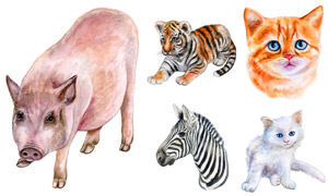 水彩绘画风格动物主题矢量素材集V12