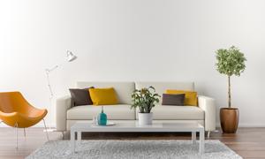 客厅空间沙发茶几布置摄影高清图片