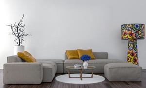 客厅干枝装饰沙发茶几摄影高清图片