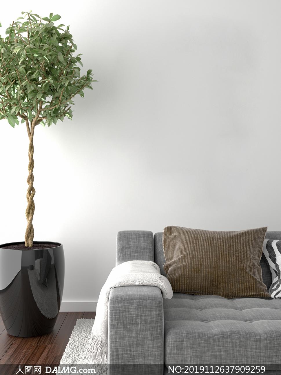 绿植与客厅沙发的一角特写摄影图片