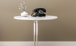 圆几上的电话机与鲜花装饰高清图片