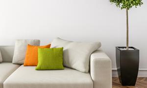 房间客厅沙发一角与绿植等摄影图片