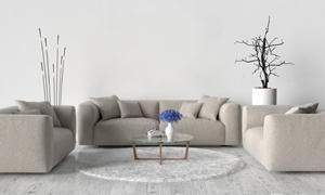 沙发茶几与装饰品陈设摄影高清图片