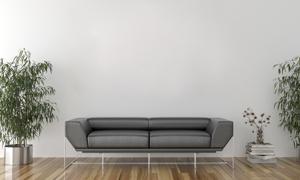 杂志绿植与两人座沙发摄影高清图片