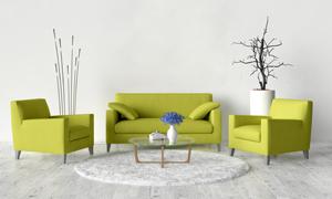 室内干枝装饰品与沙发茶几摄影图片