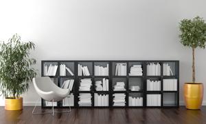 绿植椅子与一排的书架效果高清图片