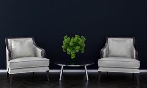 沙发绿植与圆几等陈设渲染效果图片