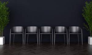 绿叶植物与一排黑椅子渲染效果图片