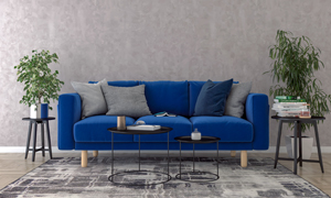 圆几绿植与蓝色的沙发渲染效果图片