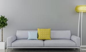 落地灯绿植与沙发枕头渲染效果图片