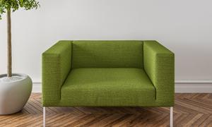 室内植物与绿色的沙发渲染效果图片