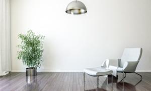 绿叶植物与吊灯沙发等渲染高清图片