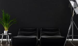 圆几绿植与沙发落地灯渲染效果图片