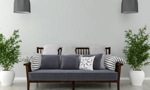 客廳綠植與靠墻的沙發渲染效果圖片