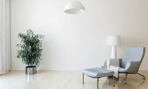 房間燈具與沙發綠植等渲染效果圖片