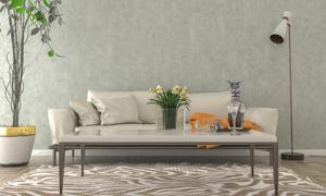 客厅沙发与茶几上的物品等高清图片