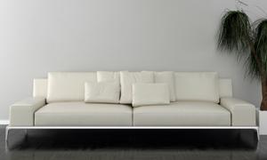 室内绿植与白色的沙发渲染图片素材