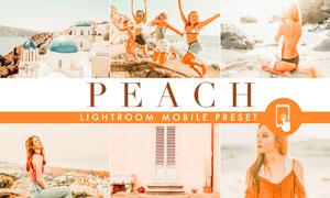 Peach系列橙色艺术效果LR移动端预设