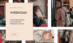 Weekday系列欧式人像复古效果LR预设