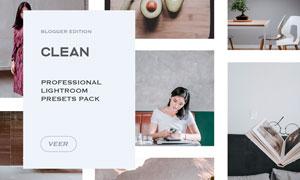 Clean系列數碼照片古典藝術效果LR預設