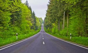 森林中通向远方的公路高清摄影图片