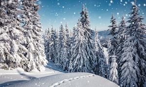 寒冷冬天山间雪景风光摄影高清图片