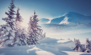 树林与远处的山峰雪景摄影高清图片