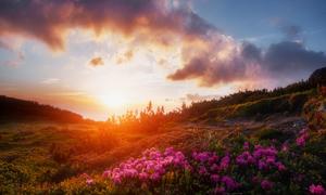 天空云彩与山上的花草摄影高清图片