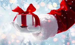 积雪树枝光斑与礼物盒摄影高清图片