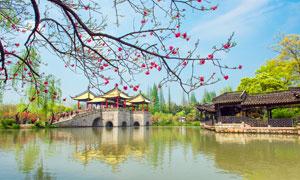 江南西湖美景高清摄影图片
