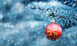 飘雪季节树上的圣诞球特写高清图片