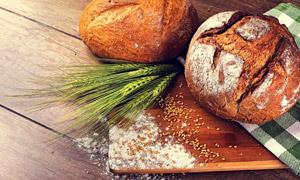 面包与青青的麦穗特写摄影高清图片