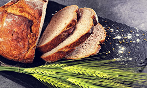 面包片与长麦芒青麦穗摄影高清图片