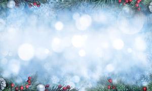 樹枝果實與圣誕球元素背景高清圖片