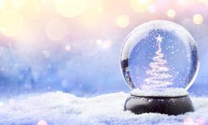 水晶球里的圣诞树创意摄影高清图片