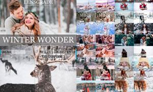 54款外景人像照片冬季冷色效果LR預設