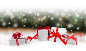 雪景中的松果與禮物盒攝影高清圖片