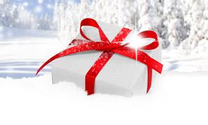 白雪樹林與禮物盒特寫攝影高清圖片