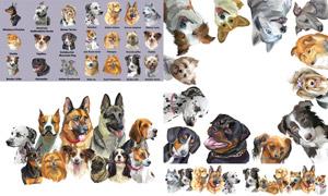 水彩绘画风格动物主题矢量素材集V18