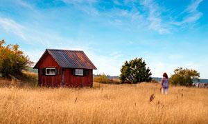 田园草丛中的小屋高清摄影图片