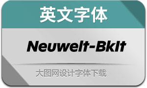 Neuwelt-BlackItalic(英文字体)