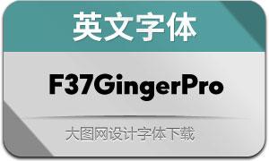 F37GingerPro系列14款英文字体