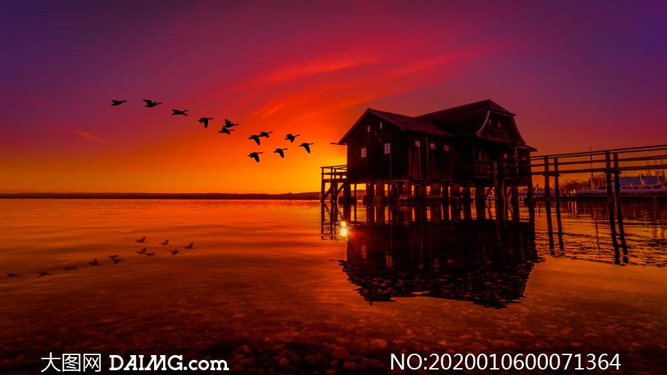 傍晚在湖上飞行的鸟群高清摄影图片