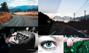 数码照片自然色调和黑白效果PS动作