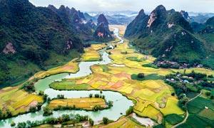 美丽的桂林山水和农田景观摄影图片