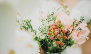 花瓶中的玫瑰花和装饰植物摄影图片